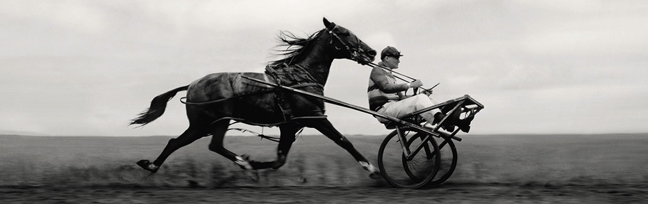 horsecart 001ps